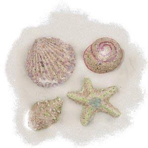 Sand Crafts For Kids